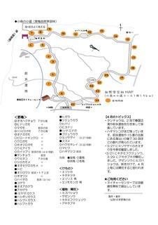 202004_春国岱と小鳥の小道_ve1_ページ_2.jpg
