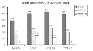 ワシ類調査全4回結果グラフ.jpg